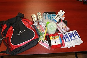 Disaster kit, Homeland Security