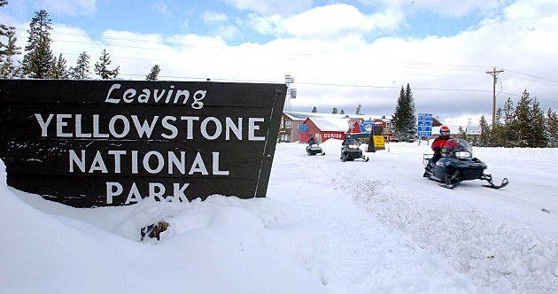 Snowmobilers Ride At Yellowstone