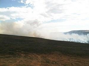 Sheep Herder Hill Fire Line on Casper Mountain