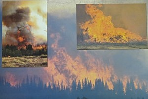 2013 Sheepherder Hill Fire Calendar