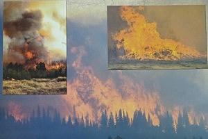2013 Sheepherder Hill Fire Calendar