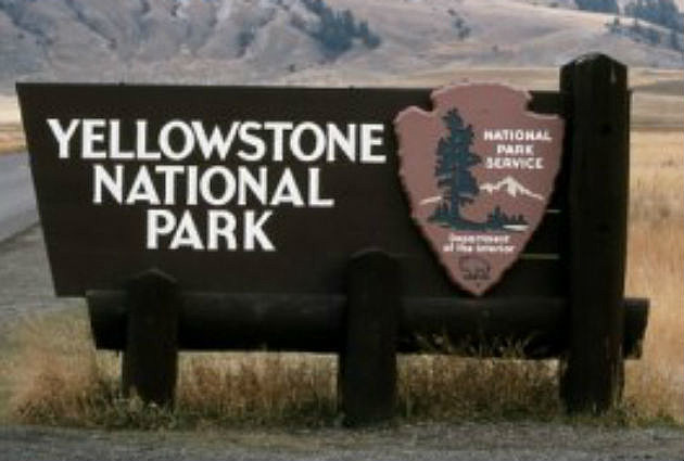 Yellowstone National Park K Ultra Hd Nature Documentary Film