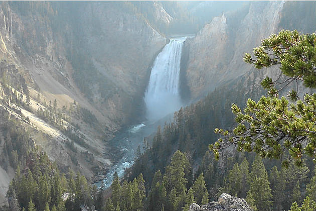 Yellowstone employee falls to death in park canyon