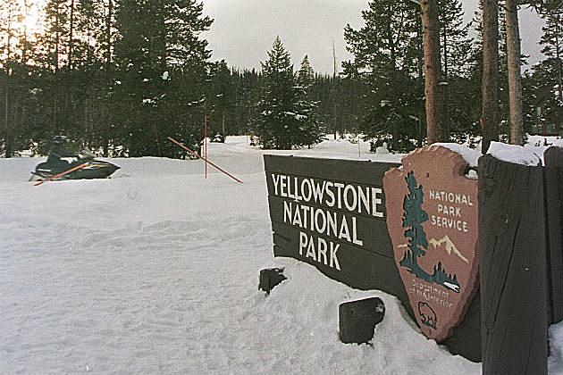 yestone sign