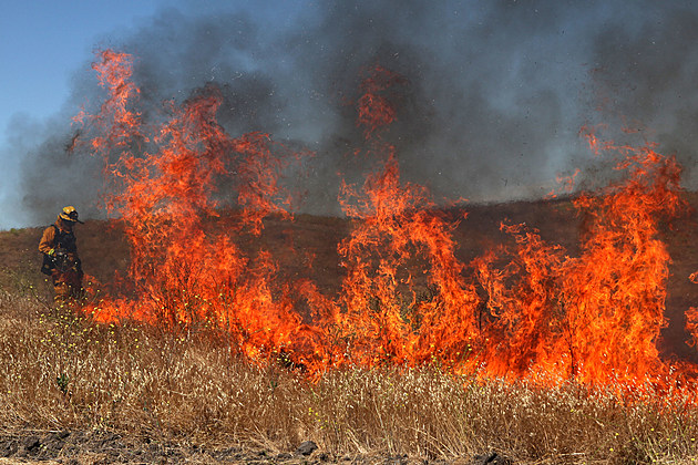 Firefighers Hold Mass Wildfire Training Drill