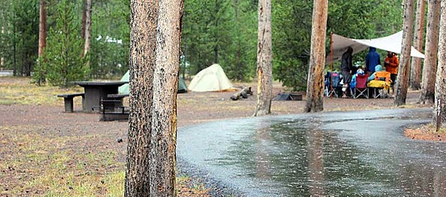 Madison Campground    National Park Service, Diane Renkin